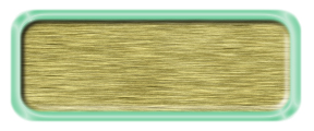 Blank Brushed Gold Nametag with a Shiny Green Metal Border