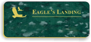 Blank Smooth Plastic Name Tag with Logo: Verde and Gold - LM922-937