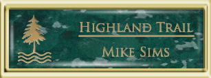 Framed Name Tag: Gold Plastic (squared corners) - Verde and Gold Plastic Insert with Epoxy