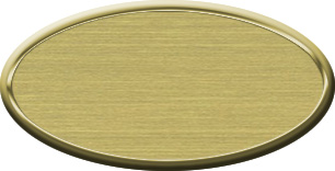 Blank Oval Plastic Gold Nametag with Brushed Gold