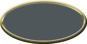 Blank Blank Oval Plastic Gold Nametag with Smoke Grey
