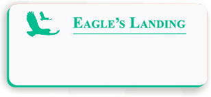 Blank Smooth Plastic Name Tag with Logo: White and Bright Green - LM922-972