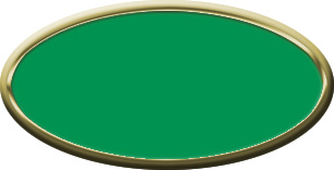 Blank Oval Plastic Gold Nametag with Kelley Green
