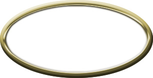 Blank Oval Plastic Gold Nametag with White
