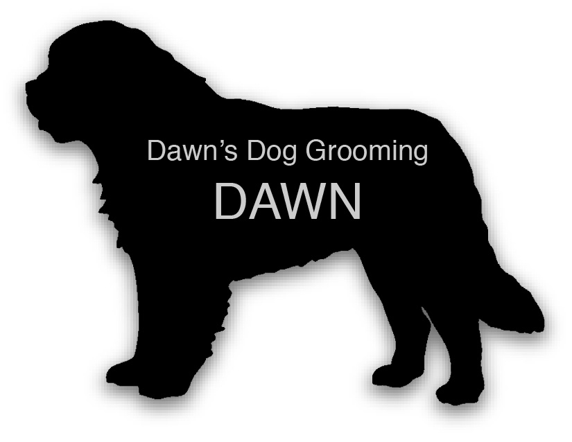 Smooth Plastic Dog Shape Name Tag - 1.85 x 2.5 inches