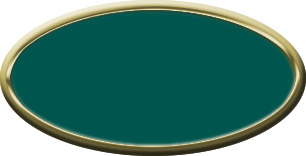 Blank Oval Plastic Gold Nametag with Evergreen