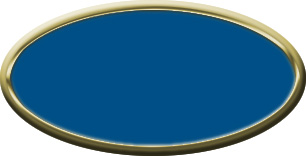 Blank Oval Plastic Gold Nametag with Sky Blue