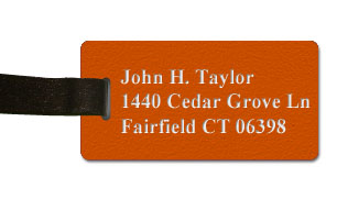 Textured Plastic Luggage Tag: Tangerine with White - 822-258