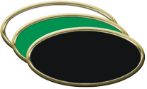 Gold Blank Oval Plastic Nametag