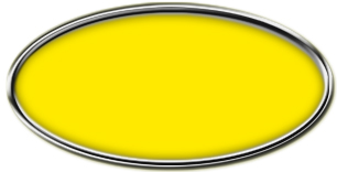 Blank Silver Oval Framed Nametag with Canary Yellow
