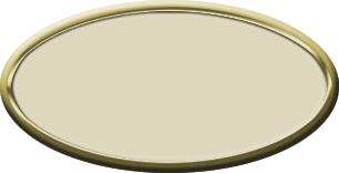 Blank Oval Plastic Gold Nametag with Almond