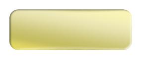 Blank Metal Name Tag: Shiny Gold