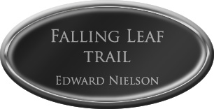 Framed Name Tag: Silver Plastic (Oval) - Black and Silver Plastic Insert with Epoxy