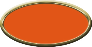 Blank Oval Plastic Gold Nametag with Tangerine