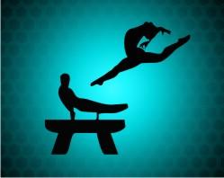 Gymnastics Medals !!