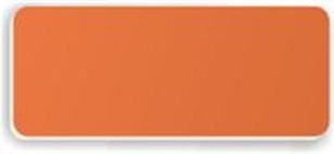 Blank Smooth Plastic Name Tag: Tangerine and White - LM 922-612
