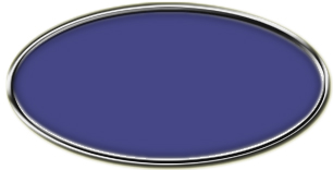 Blank Silver Oval Framed Nametag with Purple