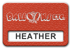 Reusable Textured Plastic Windowed Nametag: Pimento with White - 822-642