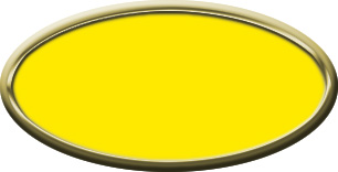 Blank Oval Plastic Gold Nametag with Canary Yellow