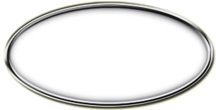 Blank Silver Oval Framed Nametag with White