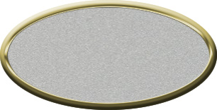 Blank Oval Plastic Gold Nametag with Smooth Silver