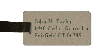 Textured Plastic Luggage Tag: Bermuda Tan with Dark Brown - 822-258