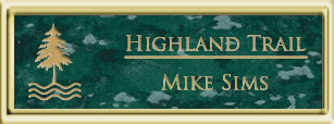 Framed Name Tag: Gold Plastic (squared corners) - Verde and Gold Plastic Insert
