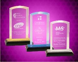 Step Arch Acrylic Award