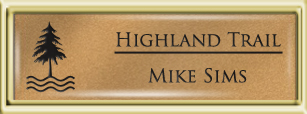 Framed Name Tag: Gold Plastic (squared corners) - Smooth Gold and Black Plastic Insert with Epoxy