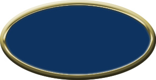 Blank Oval Plastic Gold Nametag with Patriot Blue