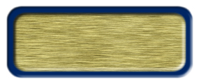 Brushed Gold Nametag with a Blue Metal Border