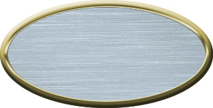 Blank Oval Plastic Gold Nametag with Brushed Silver