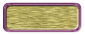 Blank Brushed Gold Nametag with a Shiny Purple Metal Border