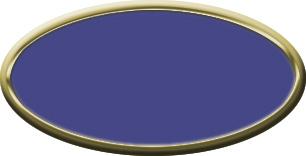 Blank Oval Plastic Black Nametag with Purple