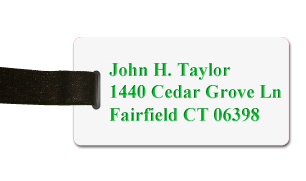 Smooth Plastic Name Tag: White with Green - LM922-209